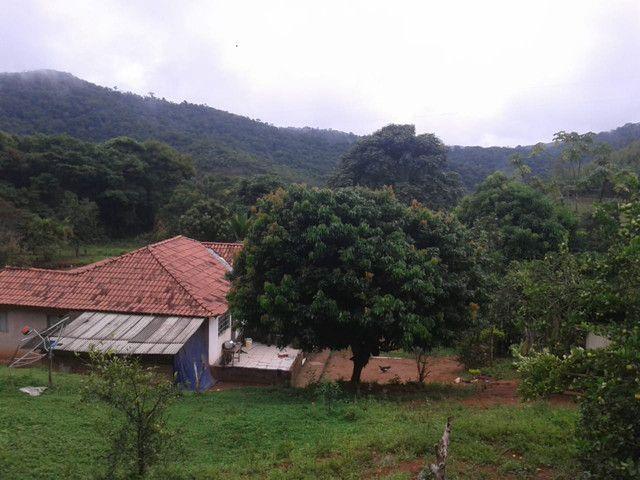Sítio à venda com 3 dormitórios em Zona rural, Piranga cod:13135 - Foto 8