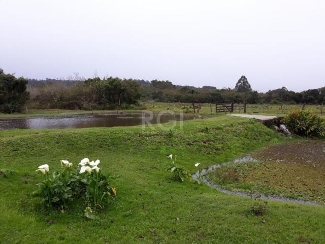 Sítio à venda em Extrema, Porto alegre cod:LU273316 - Foto 8