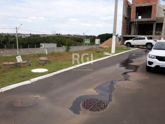 Terreno à venda em Morro santana, Porto alegre cod:MF22185 - Foto 4