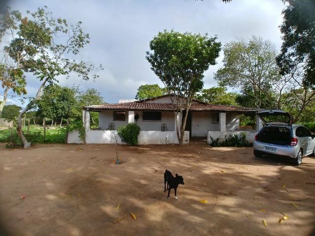 Granja com 8.8 hectares próximo da reta tabajara - Foto 15