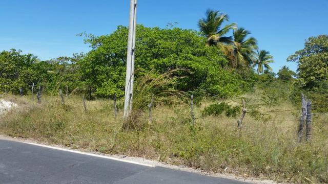 Terreno Barra da Sucatinga (próximo à praia)- Beberibe (CE) - Foto 9
