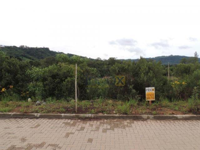 INBOX VENDE: Excelentes terrenos de 200 m² no Vila Nova, venha conferir; - Foto 4