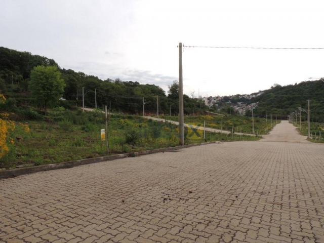 INBOX VENDE: Excelentes terrenos de 200 m² no Vila Nova, venha conferir; - Foto 9