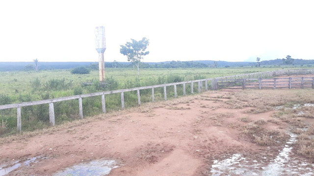 Fazenda 14.364 hectares em Alta Floresta-MT - Foto 9