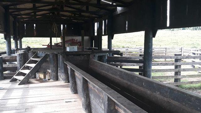 Fazenda 14.364 hectares em Alta Floresta-MT - Foto 6