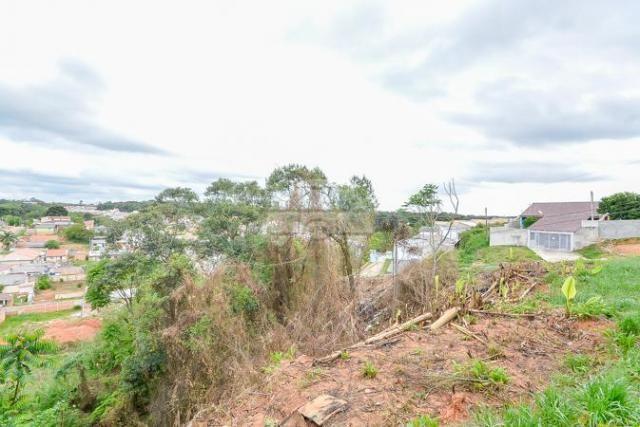 Terreno à venda em Gralha azul, Fazenda rio grande cod:151562 - Foto 12