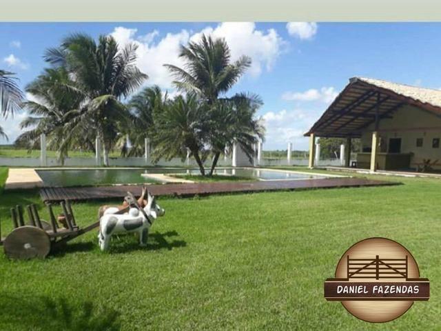 Fazenda com 480 hectares a 60 km de natal - Foto 15