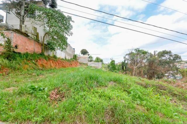 Terreno à venda em Gralha azul, Fazenda rio grande cod:151562 - Foto 3