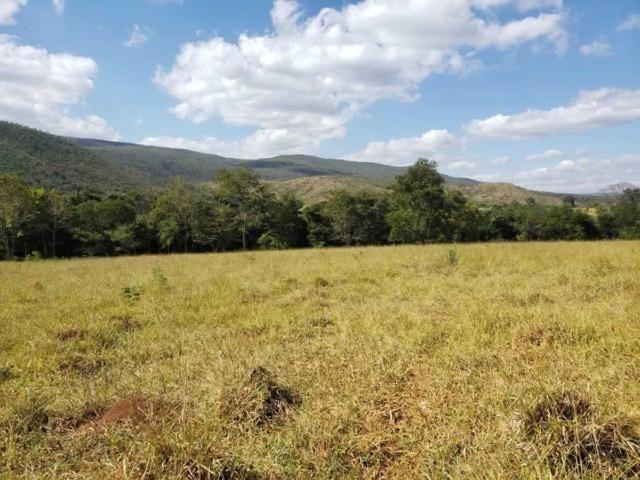 P53998 - Terreno rural com 178.841 m², na cidade de Pitangui/MG