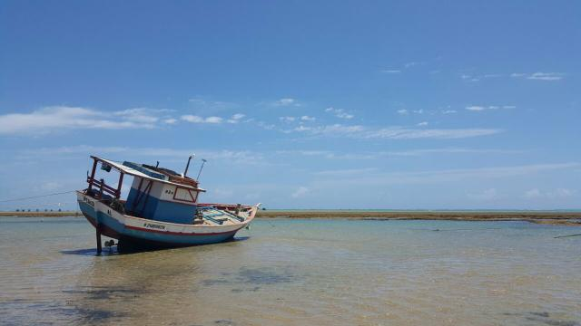 Loteamento fechado na praia do Pontal do Peba! - Foto 16
