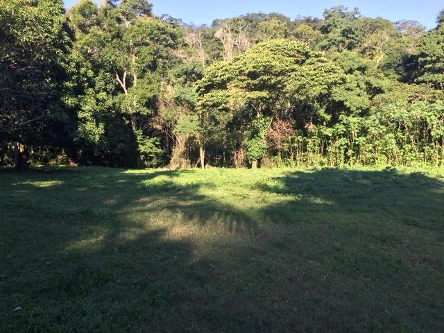 Bon: 2269 Serra do Mato Grosso - Saquarema - Foto 6