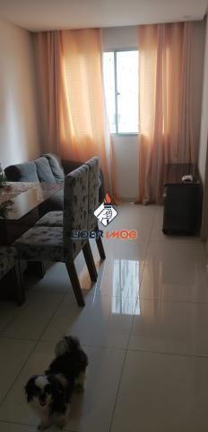 LÍDER IMOB - Apartamento MOBILIADO 2 Quartos, para Locação, na Fraga Maia, em Feira de San - Foto 4
