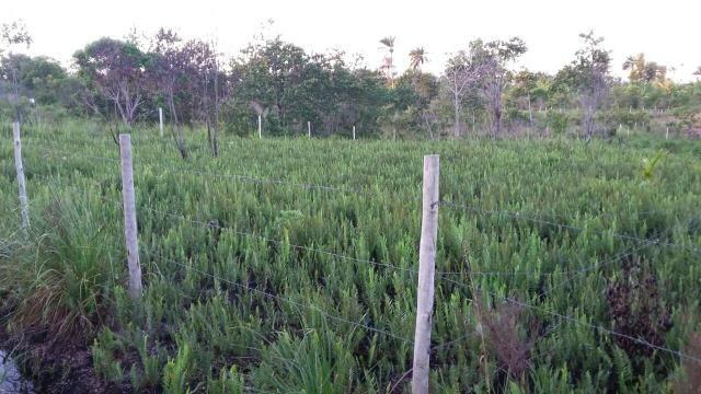 Terreno em Trancoso e Itaipu de dentro - Foto 2