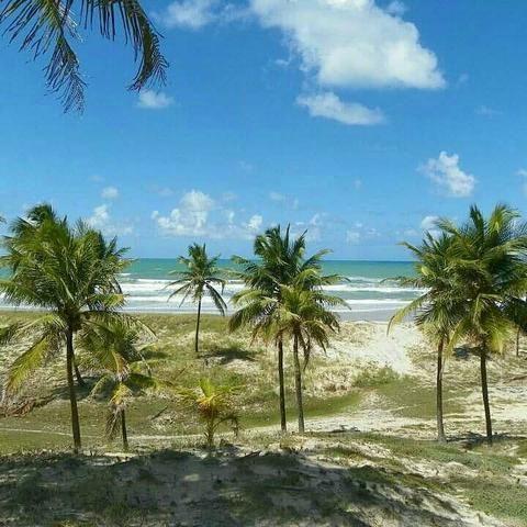 Terreno Beira Mar apenas R$8,00 m2 - Foto 5
