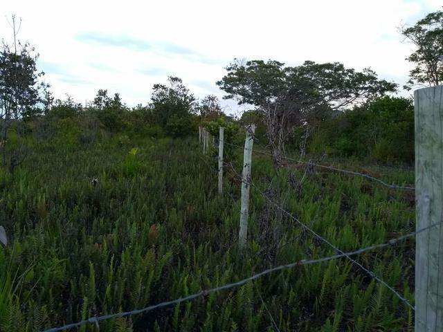 Terreno em Trancoso e Itaipu de dentro - Foto 4