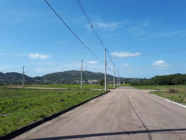 Terreno à venda em Vila nova, Porto alegre cod:VZ5649 - Foto 4
