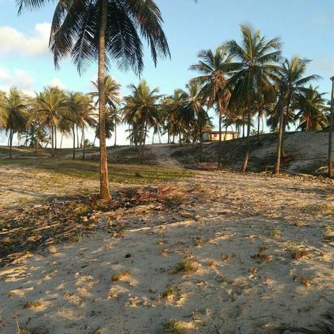 Terreno Beira Mar apenas R$8,00 m2 - Foto 2