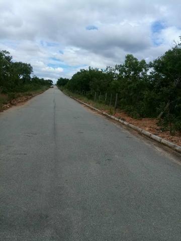 Vendo lote 1.000 metros plano Baldim bairro Santa Luzia - Foto 11