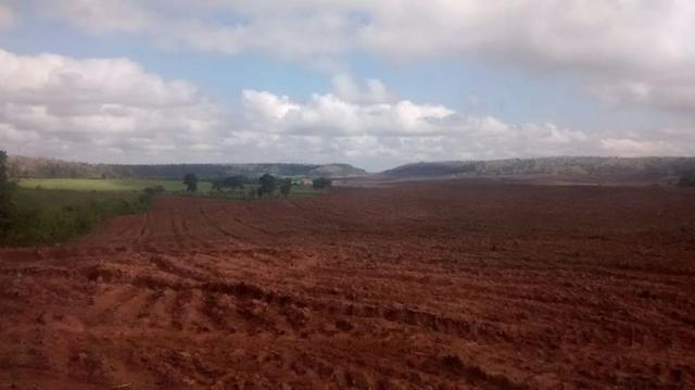 Vendo Fazenda Centro do Maranhão com excelente localização,terra teor argila 40/55% - Foto 5