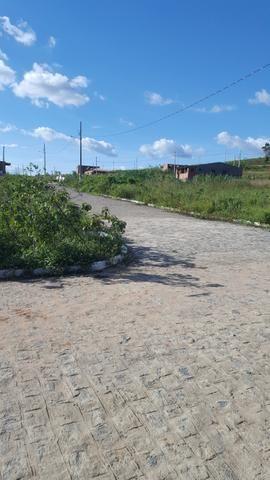 Terreno Alagoa grande tel Jussara oi 83 987152031 lizardo tim 21 981721167