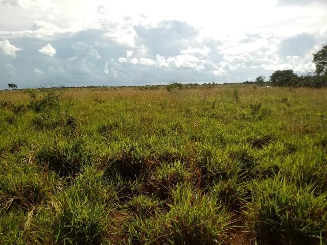 Fazenda entre Jangada e Rosário Oeste com 784 Hectares - Foto 9