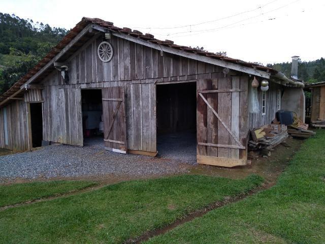 Sitio Palmital Taió-SC 4 hectares - Foto 3