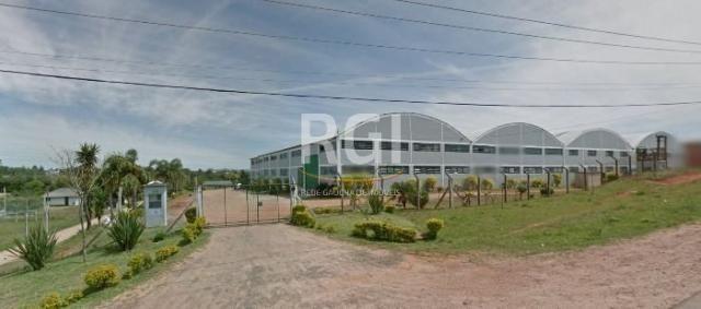 Galpão/depósito/armazém à venda em Cocão, Viamão cod:EV3369