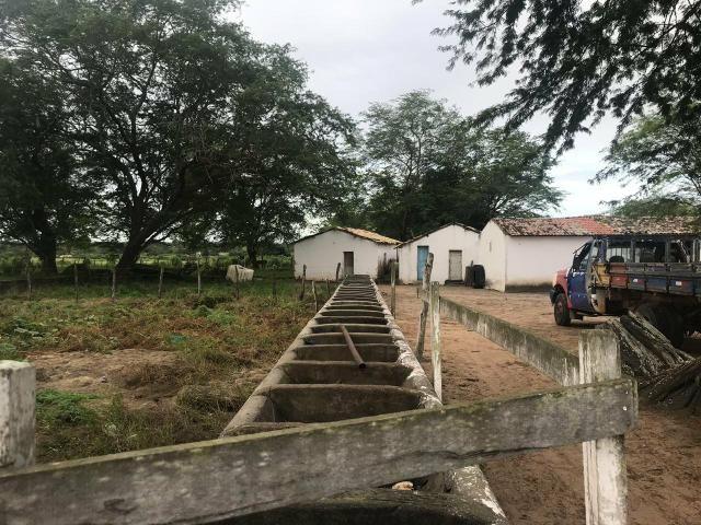 Fazenda com 480 hectares a 60 km de natal - Foto 18
