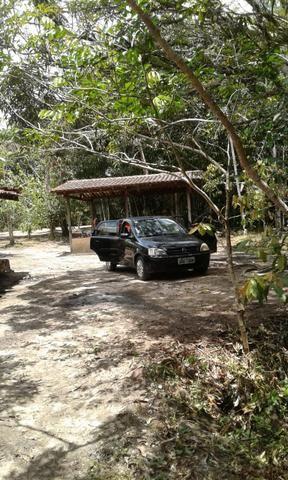 Sítio Santo Antônio do Tauá med.: 180 x 800 só R$ 150 mil - Foto 15