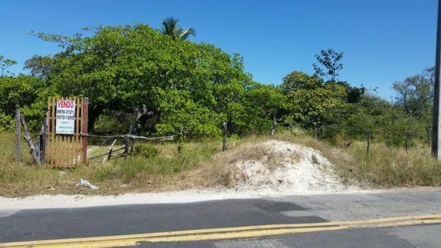 Terreno Barra da Sucatinga (próximo à praia)- Beberibe (CE) - Foto 7