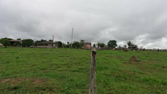 Fazenda - Porto Belo Linha 120 - 900 hectares - Foto 9