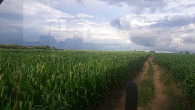 Vendo Fazenda Centro do Maranhão com excelente localização,terra teor argila 40/55% - Foto 6