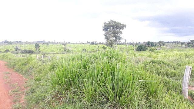 Fazenda 14.364 hectares em Alta Floresta-MT - Foto 11