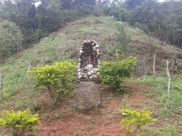 Sítio à venda com 3 dormitórios em Zona rural, Piranga cod:13135 - Foto 3