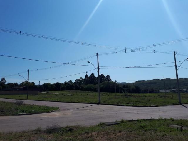 Terreno à venda em Vila nova, Porto alegre cod:VZ5649 - Foto 2