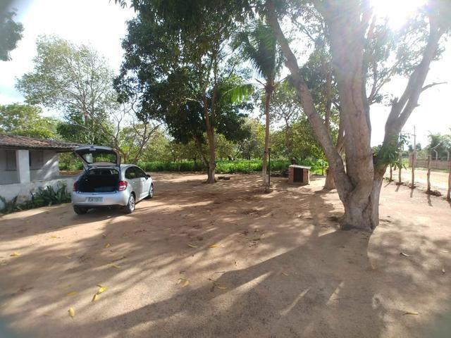Granja com 8.8 hectares próximo da reta tabajara - Foto 7