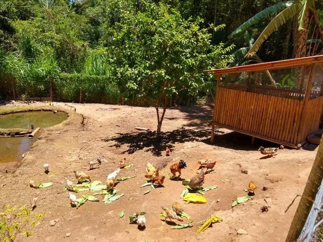 Vende-se Granja no Guarajamirim com 2400m² com 2 quartos, açudes, área gourmet. - Foto 18