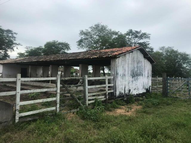 Fazenda com 480 hectares a 60 km de natal - Foto 13