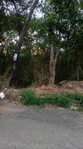 Lote no asfalto no setor Recanto de Caldas 420 metros - Foto 4