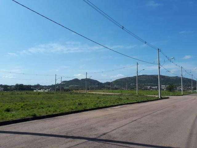 Terreno à venda em Vila nova, Porto alegre cod:VZ5649 - Foto 5