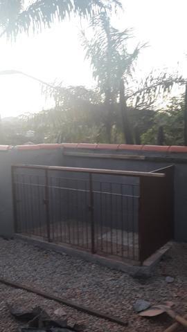 Vendo canil de ferro pintado/casinha - Foto 2