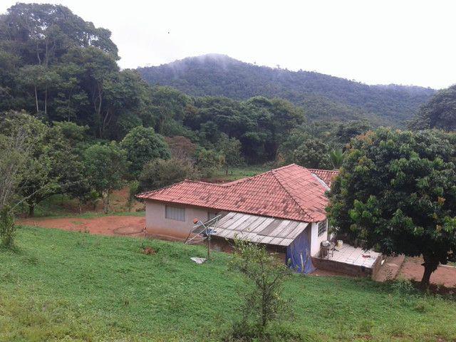 Sítio à venda com 3 dormitórios em Zona rural, Piranga cod:13135 - Foto 10
