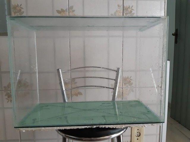 Aquário 45 litros  - Foto 3