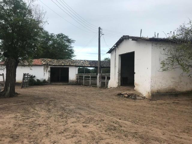 Fazenda com 480 hectares a 60 km de natal - Foto 14