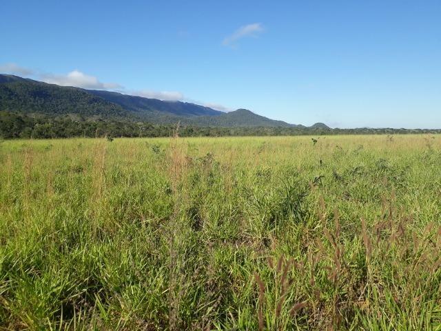 Fazenda entre Jangada e Rosário Oeste com 784 Hectares - Foto 18