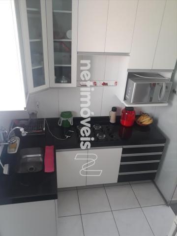 Apartamento à venda com 2 dormitórios em Água branca, Contagem cod:517792 - Foto 18