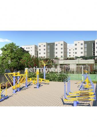 Apartamento à venda com 2 dormitórios em Parque das indústrias, Betim cod:715770 - Foto 4