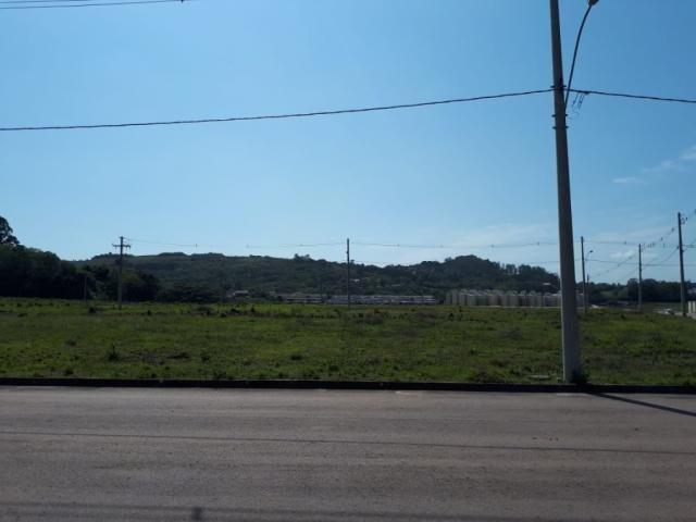Terreno à venda em Vila nova, Porto alegre cod:VZ5649
