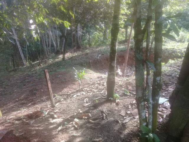 Vendo terreno ou TROCO - Foto 2