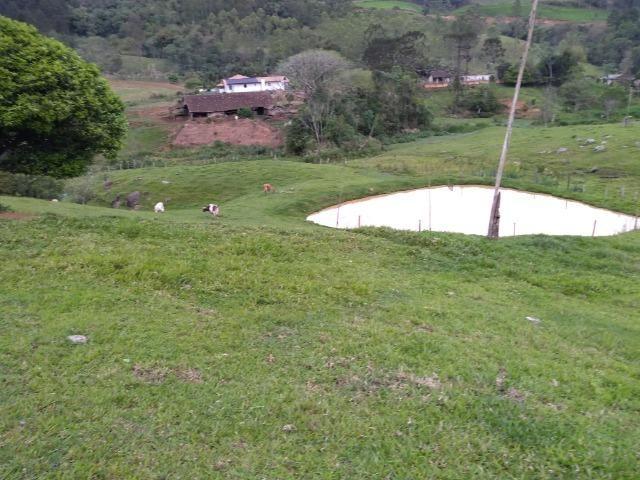 Sitio Palmital Taió-SC 4 hectares